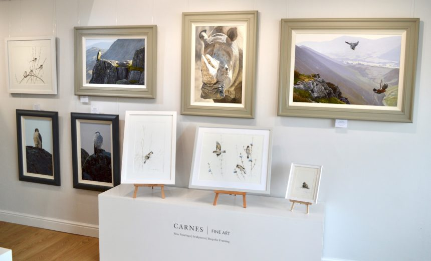 Wildlife Art Exhibition